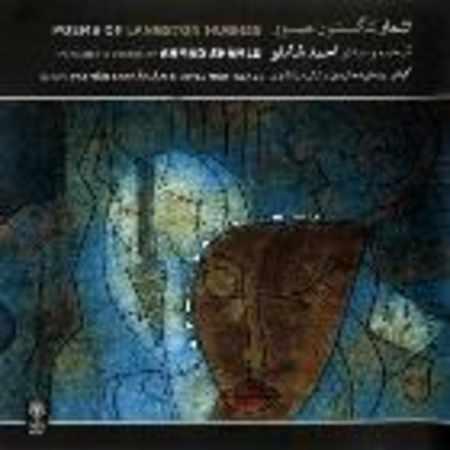دانلود اهنگ احمد شاملو ترانه