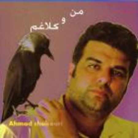 دانلود اهنگ احمد شکوری منو کلاغم