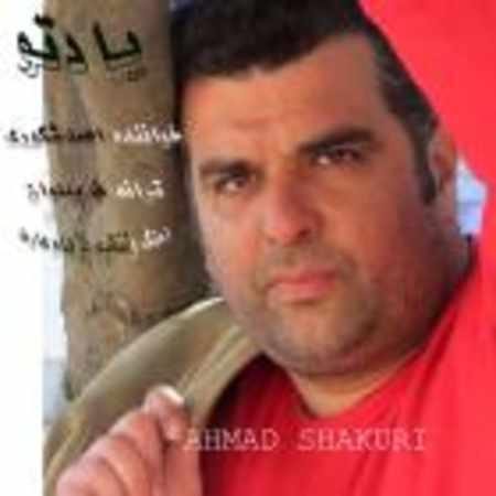 دانلود اهنگ احمد شکوری یاد تو