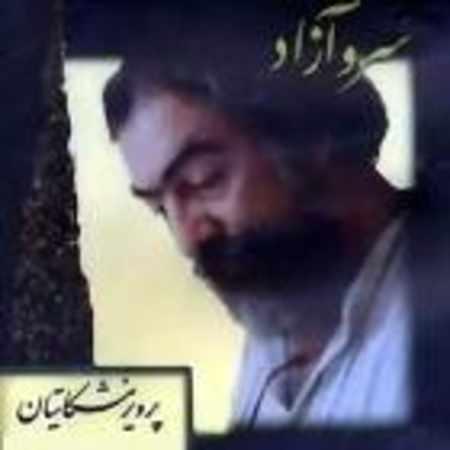 دانلود اهنگ پرویز مشکاتیان چهار مضراب همایون