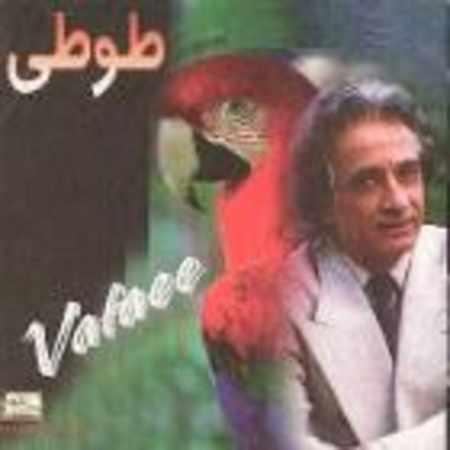 دانلود آلبوم طوطی از جمال وفایی