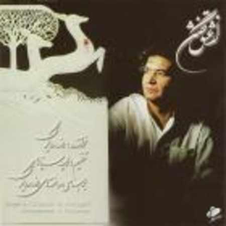دانلود آلبوم از عشق گفتن از رضا رویگری