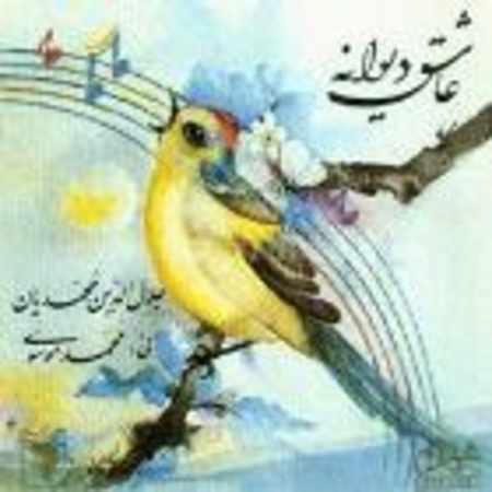 دانلود آلبوم عاشق دیوانه از سید جلال الدین محمدیان