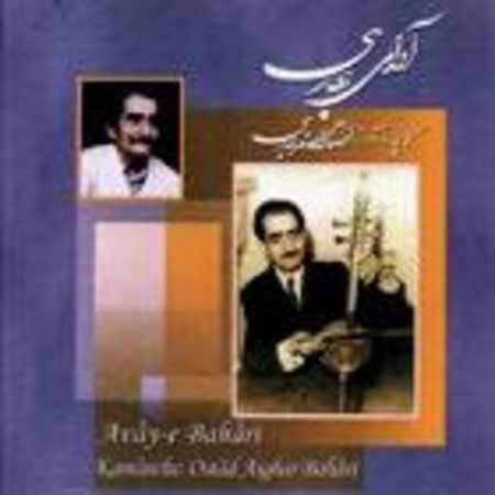 دانلود آلبوم آوای بهاری از علی اصغر بهاری