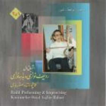دانلود آلبوم ردیف نوازی و بداهه نوازی ۲ از علی اصغر بهاری