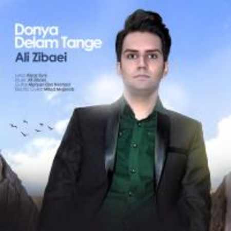 دانلود اهنگ علی زیبایی (تکتا) دنیا تنگه دلم