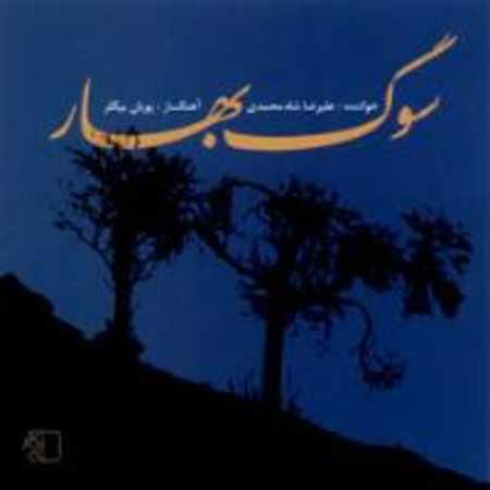 دانلود آلبوم سوگ بهار از علیرضا شاه محمدی