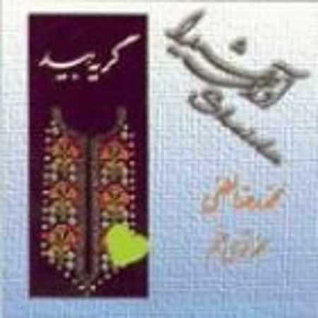دانلود آلبوم گریه بید از محمدرضا لطفی