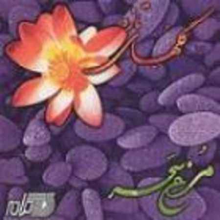 دانلود آلبوم مرغ سحر از نادر گلچین