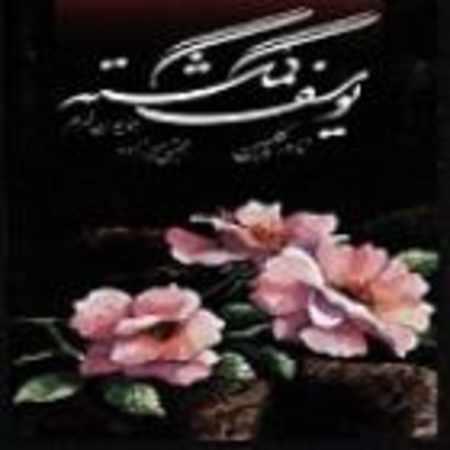 دانلود آلبوم یوسف گمگشته از نادر گلچین
