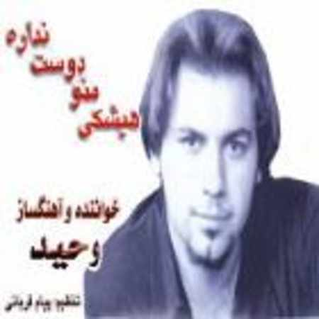 دانلود آلبوم هیشکی منو دوست نداره از وحید حاجی تبار