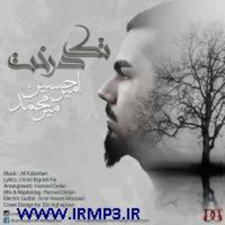 دانلود آلبوم تک اهنگ ها از امیر حسین میرمحمد