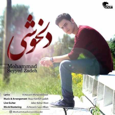 دانلود اهنگ محمد سید زاده دلخوشی