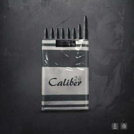 دانلود آلبوم کالیبره 24 از Various Artists