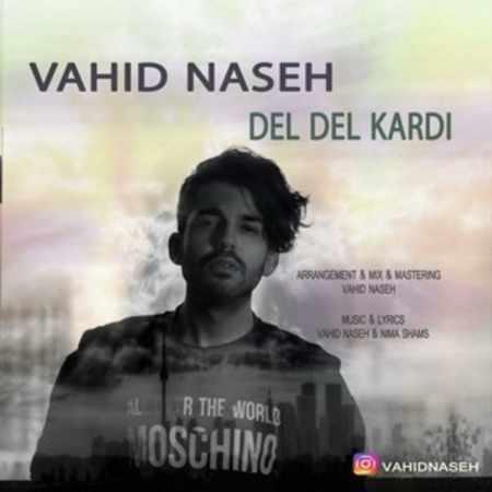 دانلود آلبوم تک اهنگ ها از وحید ناصح