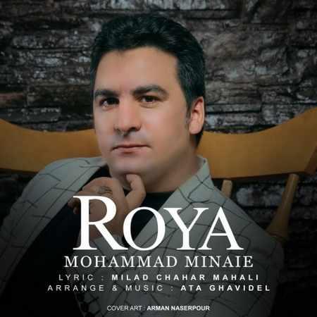 دانلود اهنگ محمد مینایی رویا