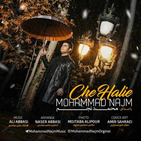دانلود اهنگ محمد نجم چه حالیه