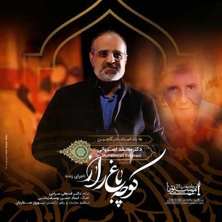 دانلود اهنگ محمد اصفهانی کوچه باغ راز