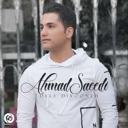 دانلود اهنگ احمد سعیدی دل دیوونه