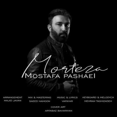دانلود آلبوم تک اهنگ ها از مصطفی پاشایی